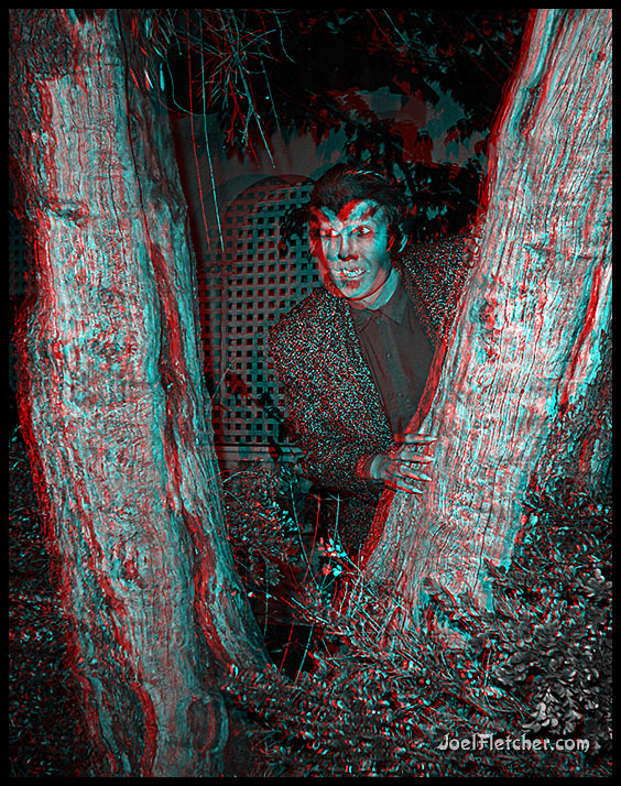 Wolfman peering behind tree. gallery