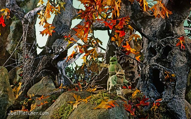 Frog and Toad in a scary woods. edge