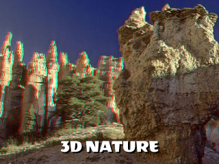 3d nature anaglyph