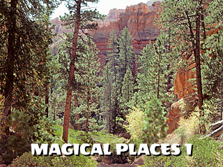 magical places 1