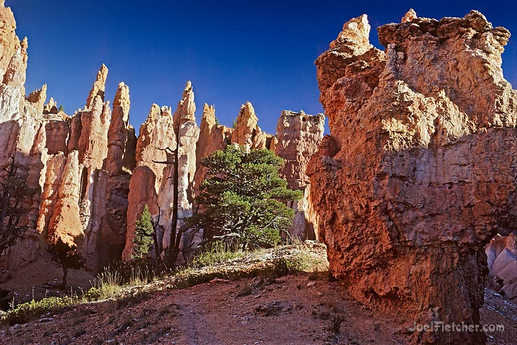 Spire formations at Bryce Canyon. gallery