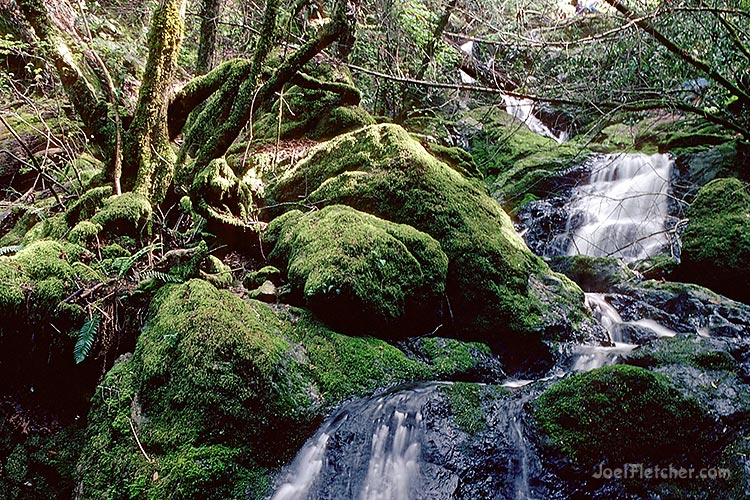 Waterfall with mossy rocks. gallery