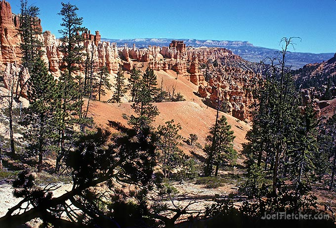 Unusual view of Bryce Canyon cliffs.