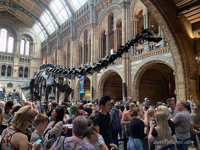 Huge dinosaur skeleton in a crowded museum