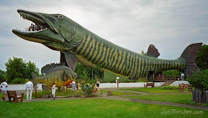 Gigantic fish sculptures.