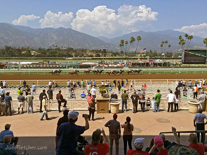 Thoroughbred horses in a race, with audience watching.